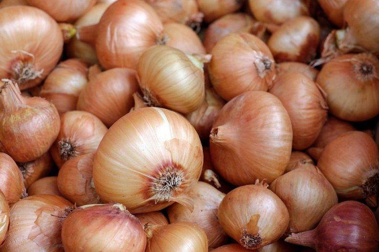 onions-1397037-1920jpg-3ac7fe27e3b69ca5.jpg